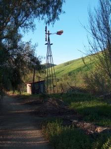windmill HPIM0096