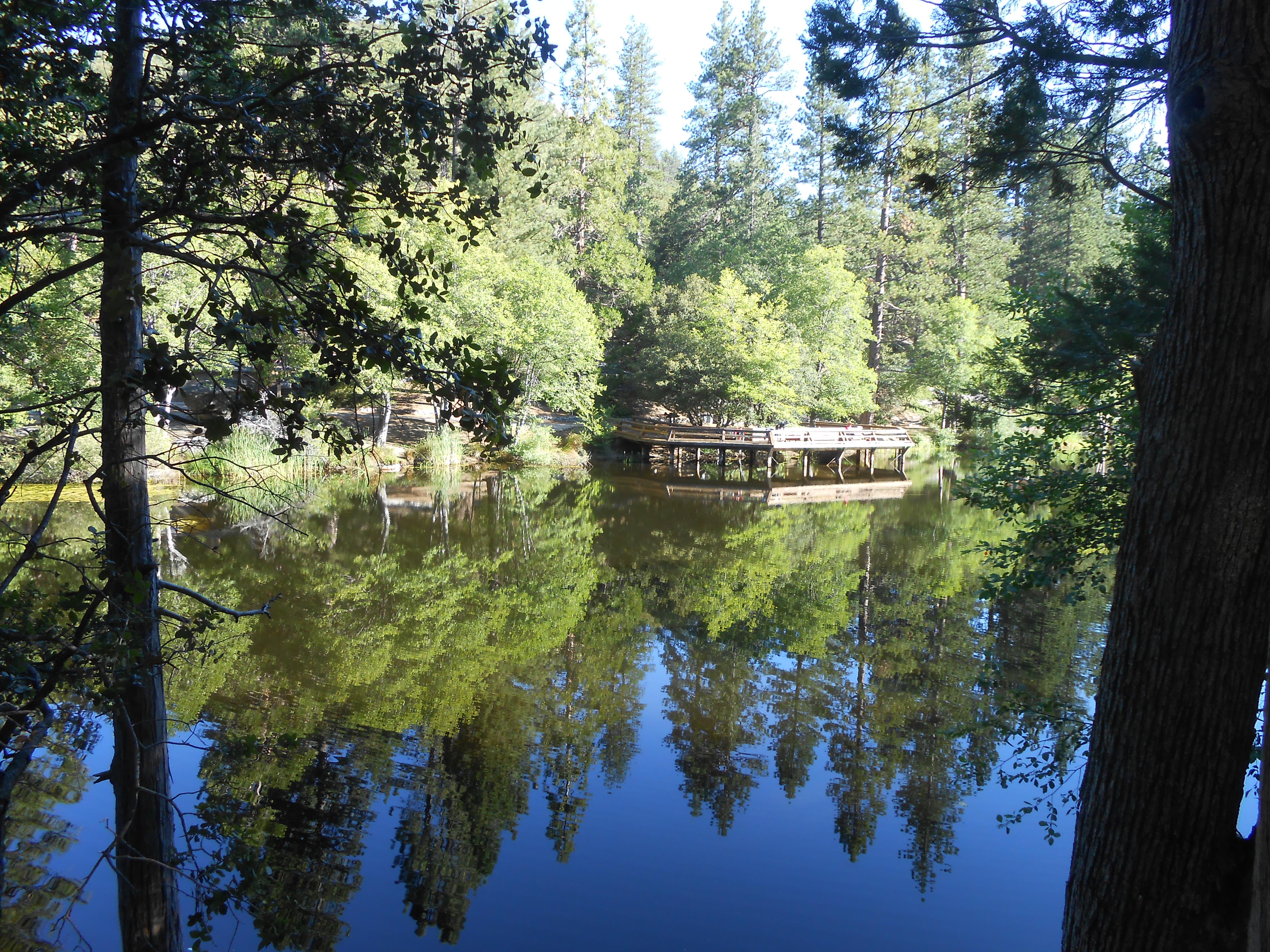 lake fulmor reflection