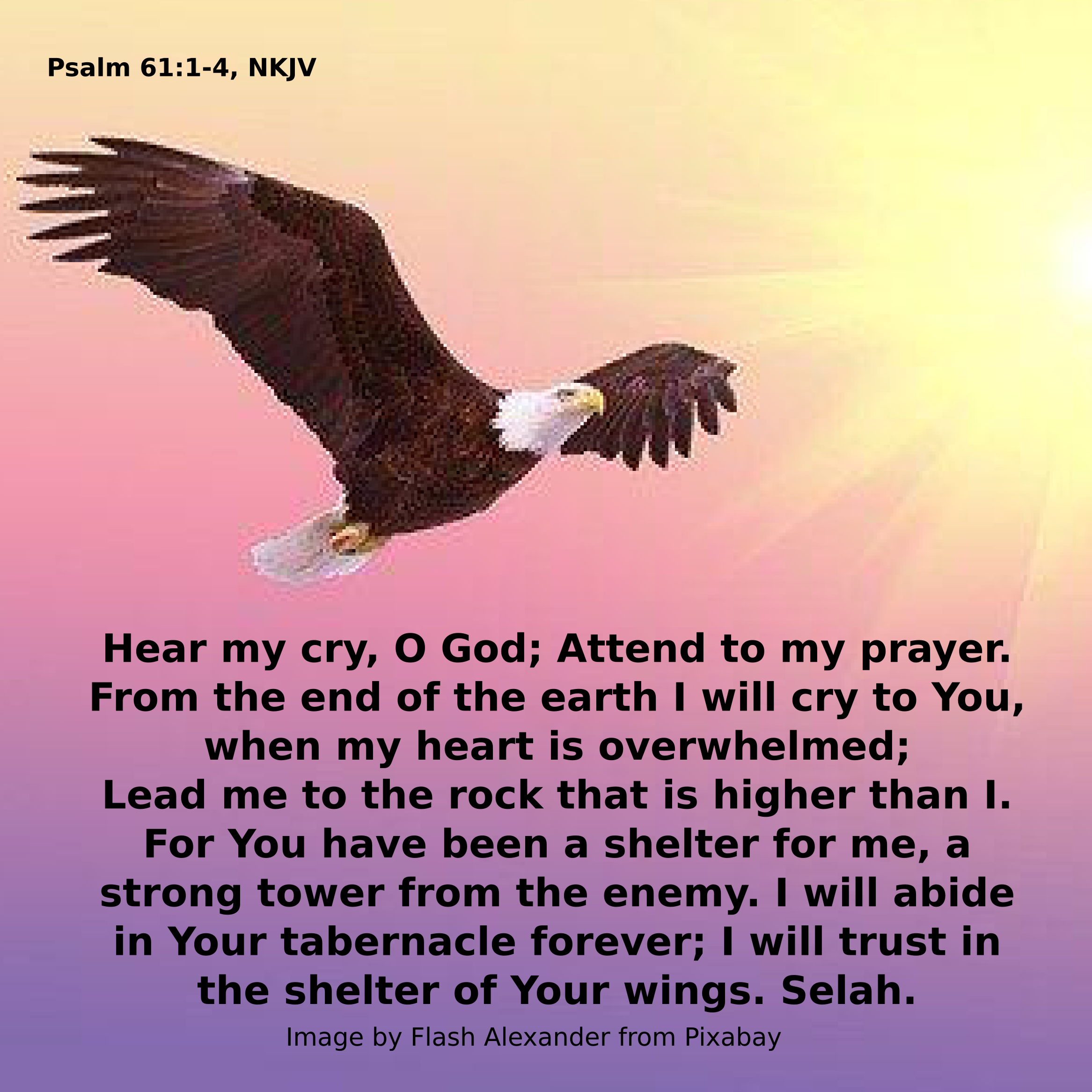 Psalm 61 eagle.png